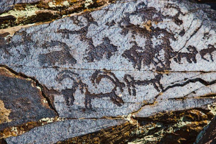 drevnie-petroglify-2-yuko-fotograf-svetlana-chalikova